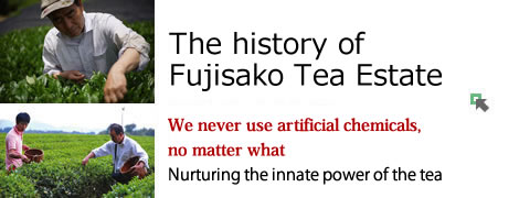 The history of Fujisako Tea Estate/We never use artificial chemicals, no matter what/Nurturing the innate power of the tea